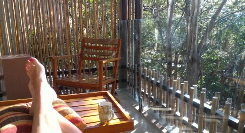 Andaz papagayo balcony