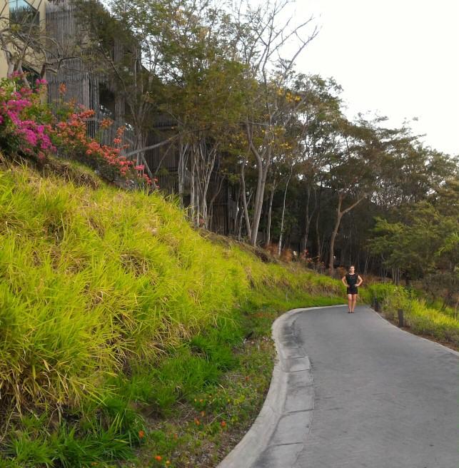 Andaz Papagayo paths